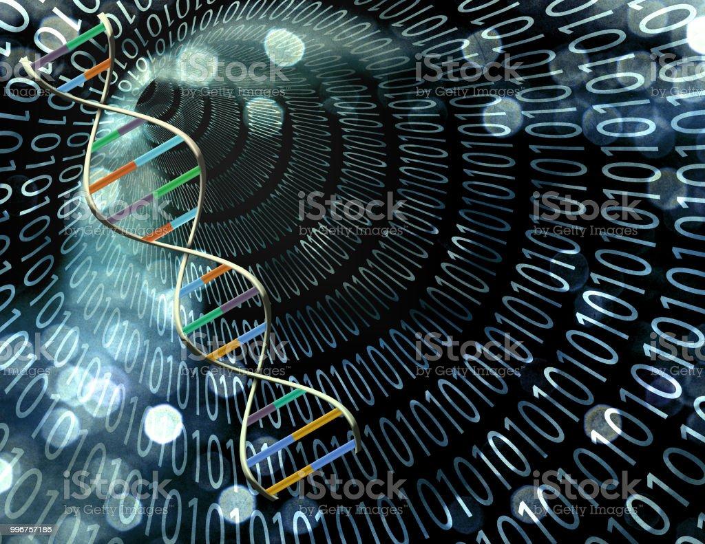 DNA binary code stock photo