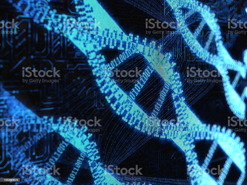 DNA binary royalty-free stock photo