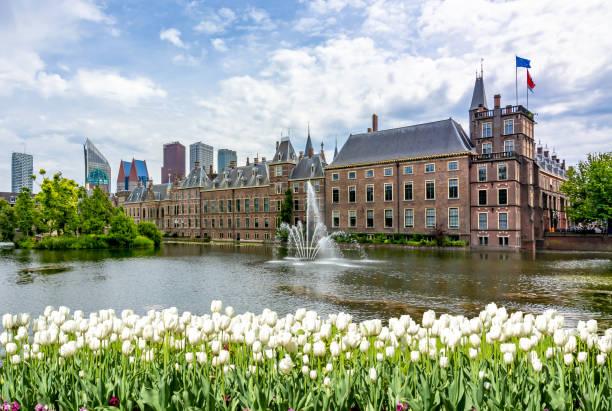 binnenhof building (dutch parliament) in hague, netherlands - den haag stockfoto's en -beelden