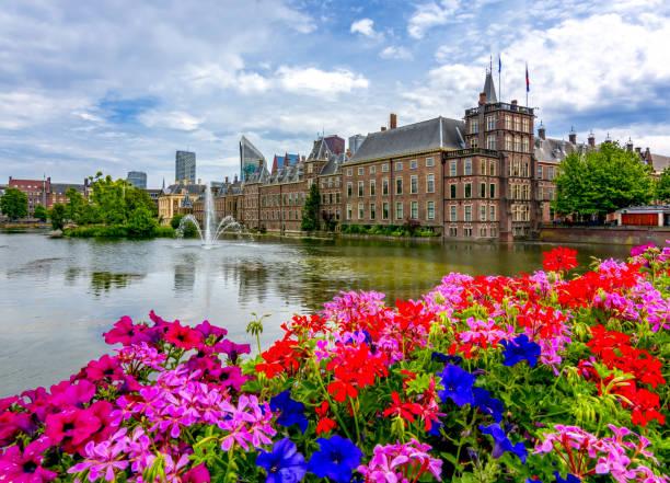 binnenhof (het nederlandse parlement), den haag, nederland - den haag stockfoto's en -beelden