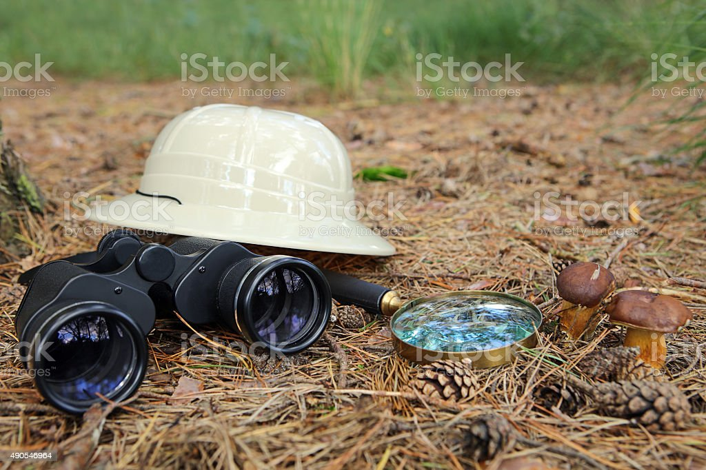 Binoculars, Magnifying Glass and Pith Helmet in a Forest stock photo