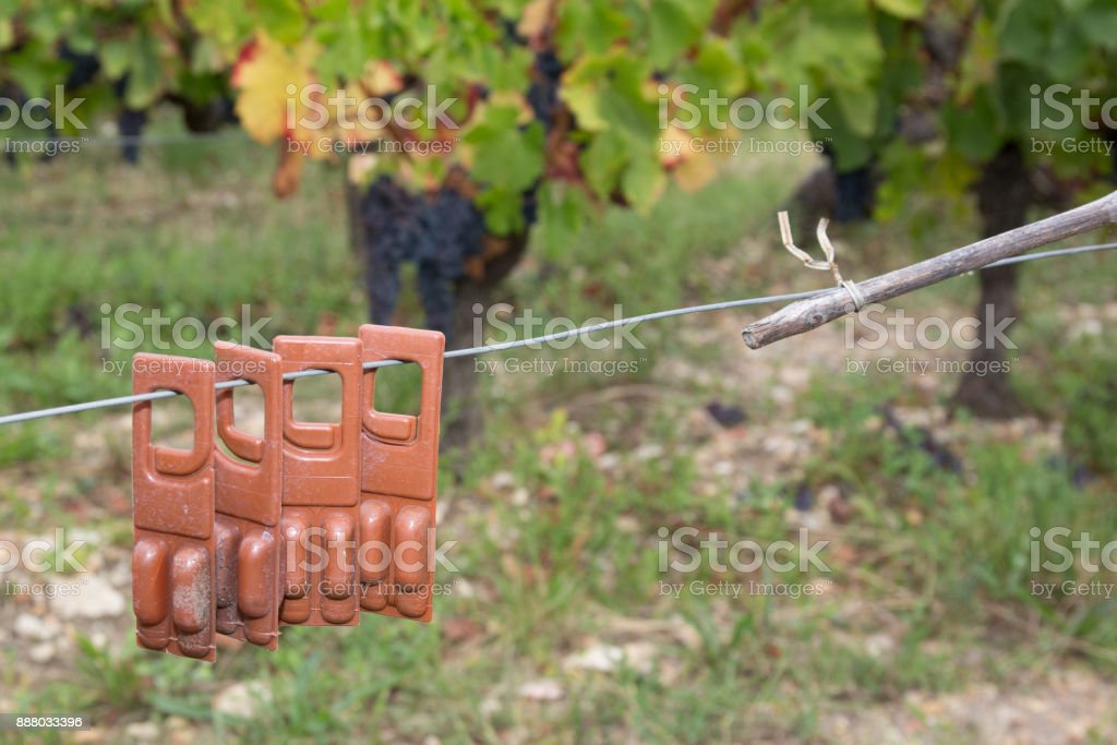 Bio Landwirtschaft Weingärten mit einer neuen Methode gesteuert – Foto
