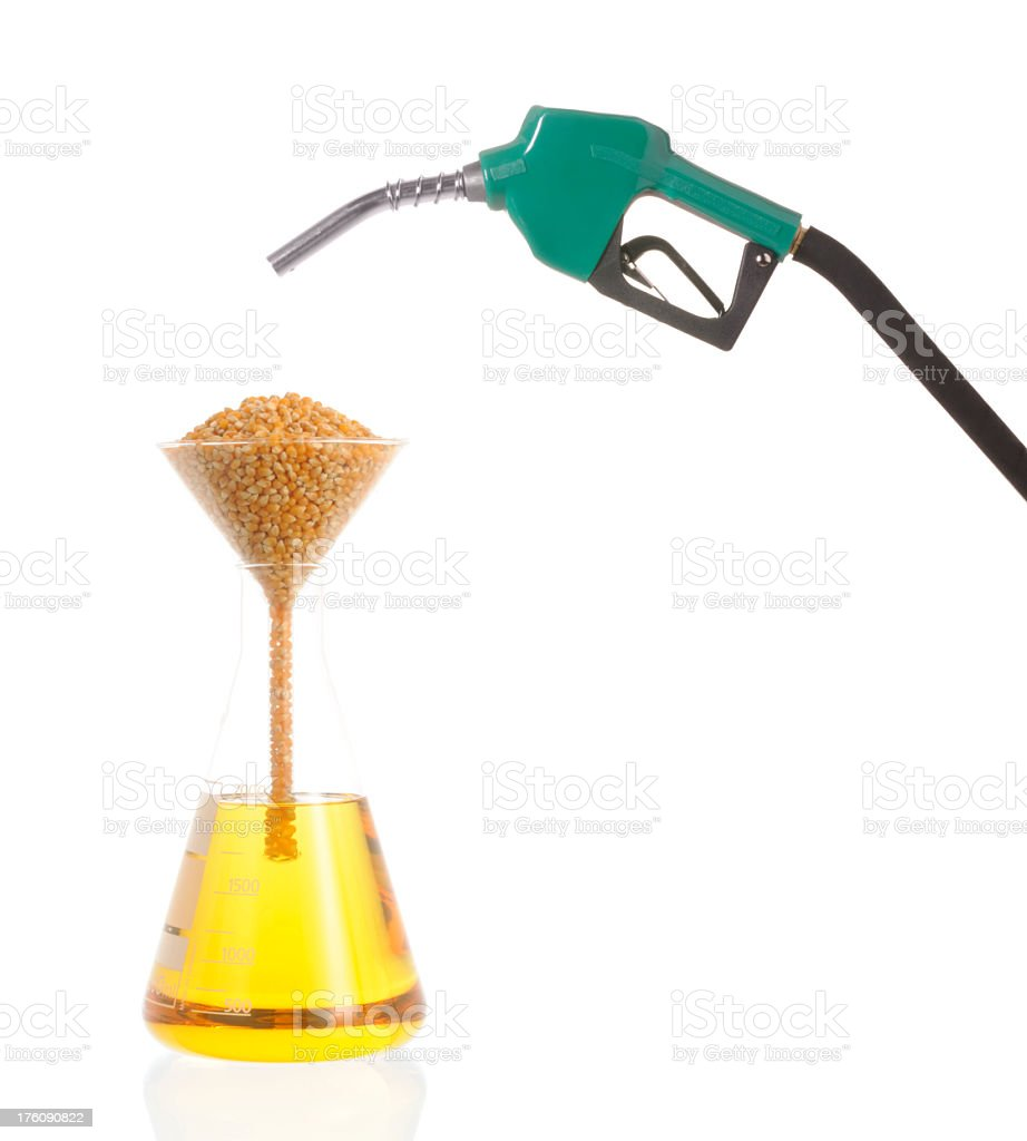 Bio Fuel & Corn Oil royalty-free stock photo