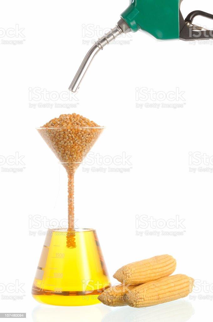 Bio Fuel (corn) royalty-free stock photo