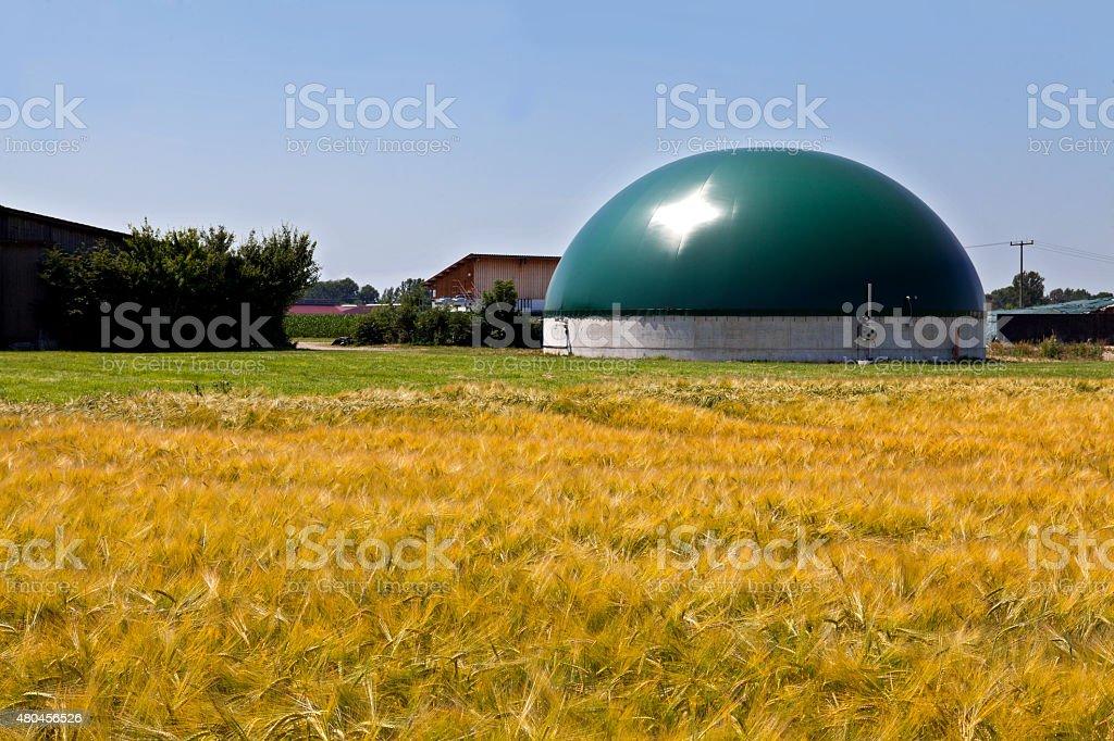 Bio gas plant in a corn field stock photo