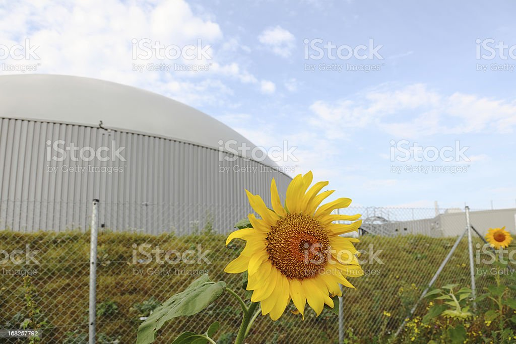 bio gas power plant with two daisy sun flowers royalty-free stock photo