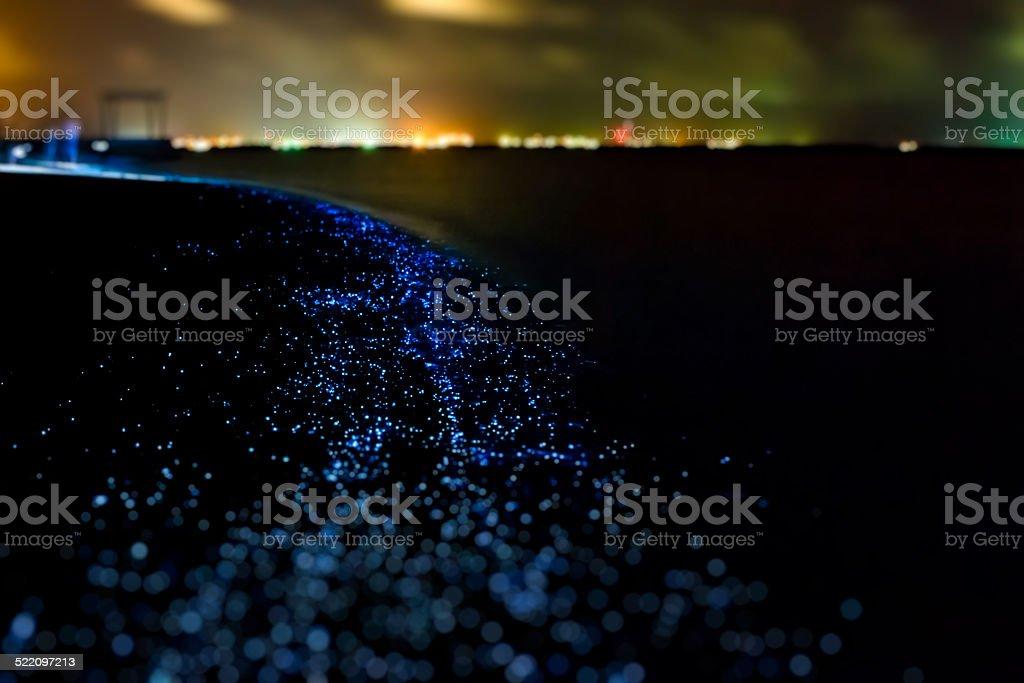 Bio luminescence. Illumination of plankton at Maldives. stock photo