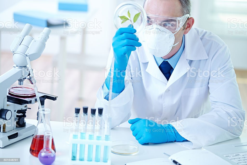 Biochemist At Work Stock Photo & More Pictures of 30-39 Years | iStock
