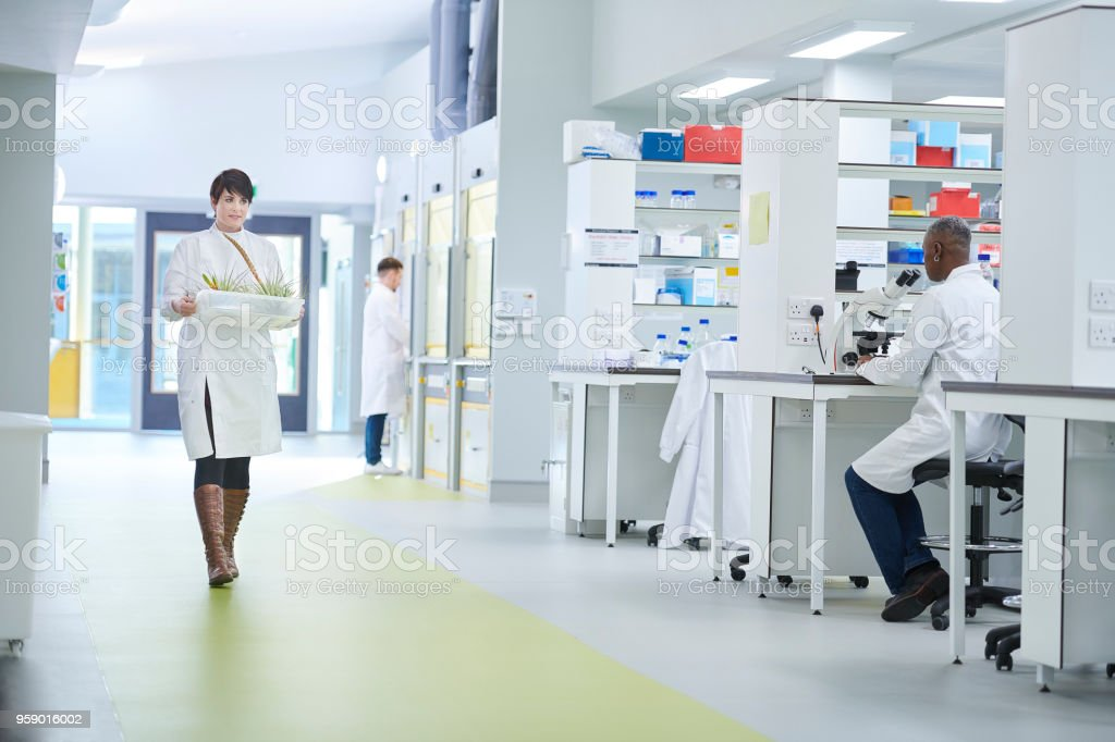 Biochemist Lab Stock Photo More Pictures Of 20 29 Years Istock