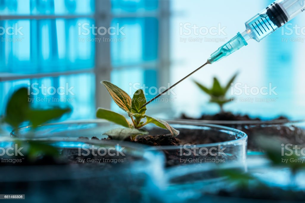 Biochemistry stock photo
