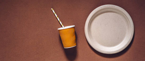 biodegradable and compostable disposable paper plate, cup and drinking straw - biodegradabile foto e immagini stock