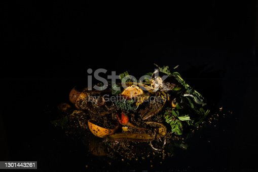 organic fruit and vegetable peels to compost with black background