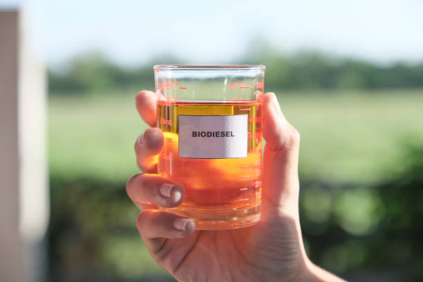 Biodiesel, alternative Petroleum energy in clear glass Biodiesel, alternative energy in clear glass biodiesel stock pictures, royalty-free photos & images