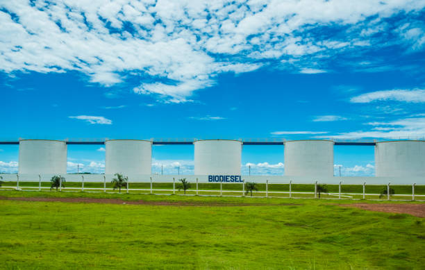 CUIBA, MATO GROSSO, MARCH 2017 - Biodisel factory in Brazil with silos and blue sky CUIBA, MATO GROSSO, MARCH 2017 - Biodisel factory in Brazil with silos and blue sky biodiesel stock pictures, royalty-free photos & images