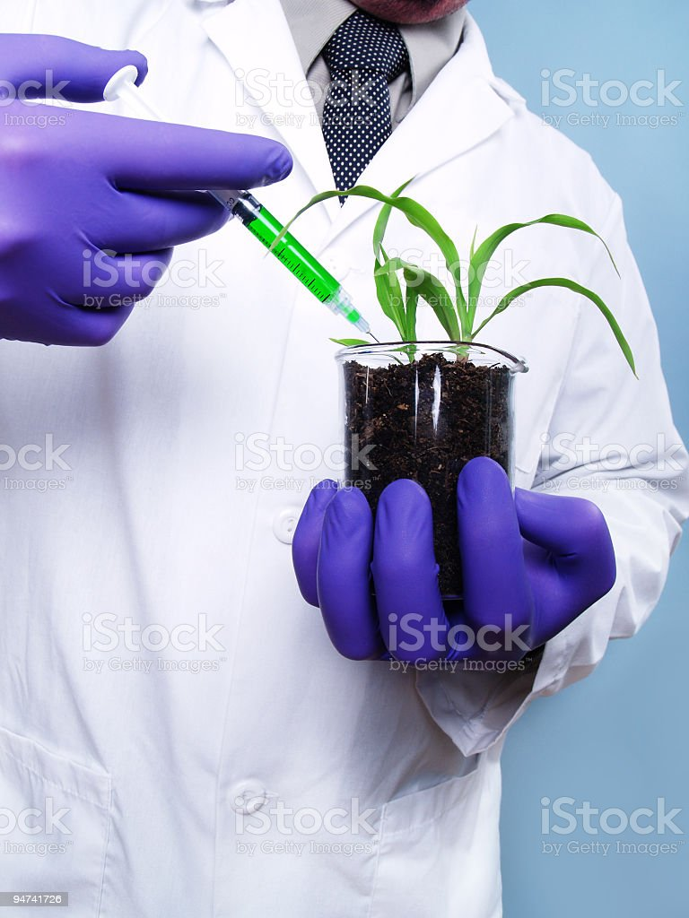 Bio-Engineering royalty-free stock photo