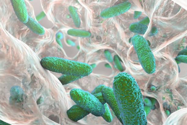 Biofilm containing bacteria Klebsiella stock photo