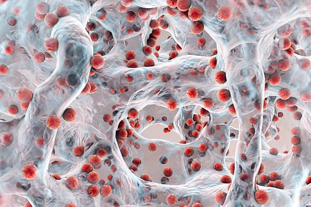 Biofilm of antibiotic resistant bacteria stock photo