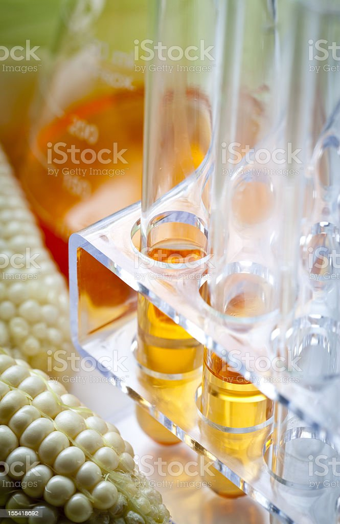 Biofuel or Corn Syrup stock photo