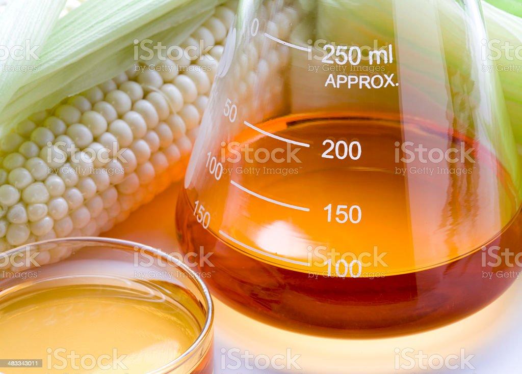 Biocombustível ou xarope de milho - foto de acervo