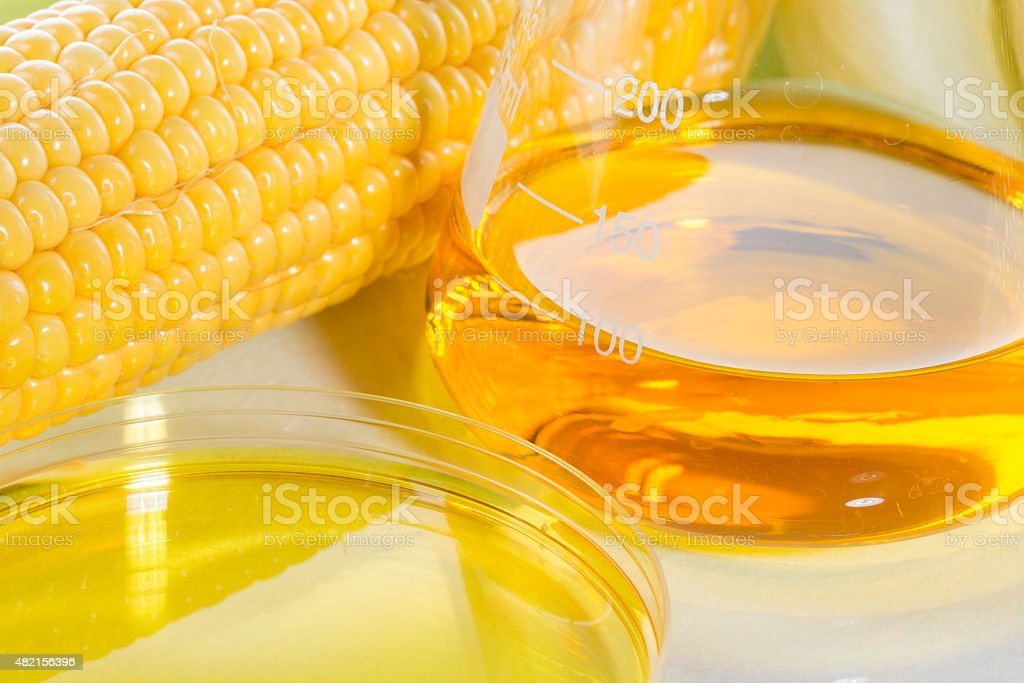 Biofuel or Corn Syrup sweetcorn stock photo