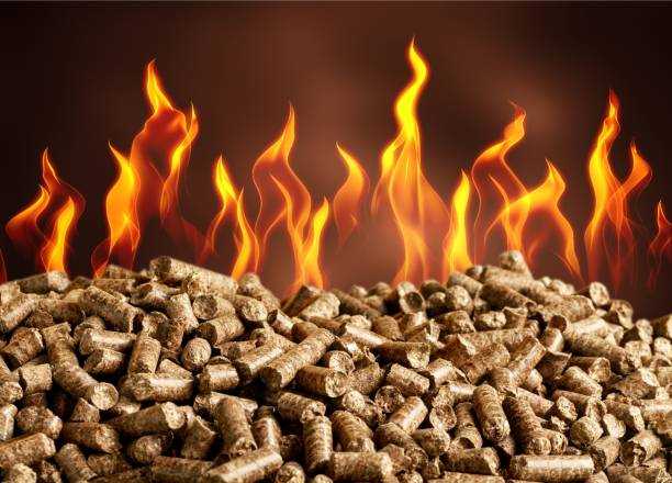 Biofuel. Pellets Biomass- close up on background biofuel stock pictures, royalty-free photos & images