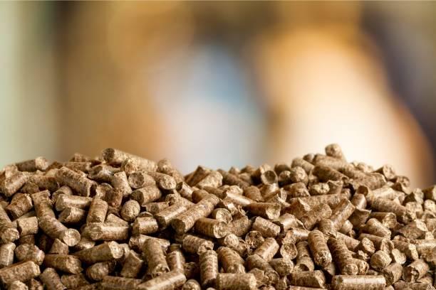 Biofuel. stock photo