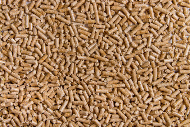 Biofuels. Alternative biofuel from sawdust. Wood pellets background. The cat litter. stock photo