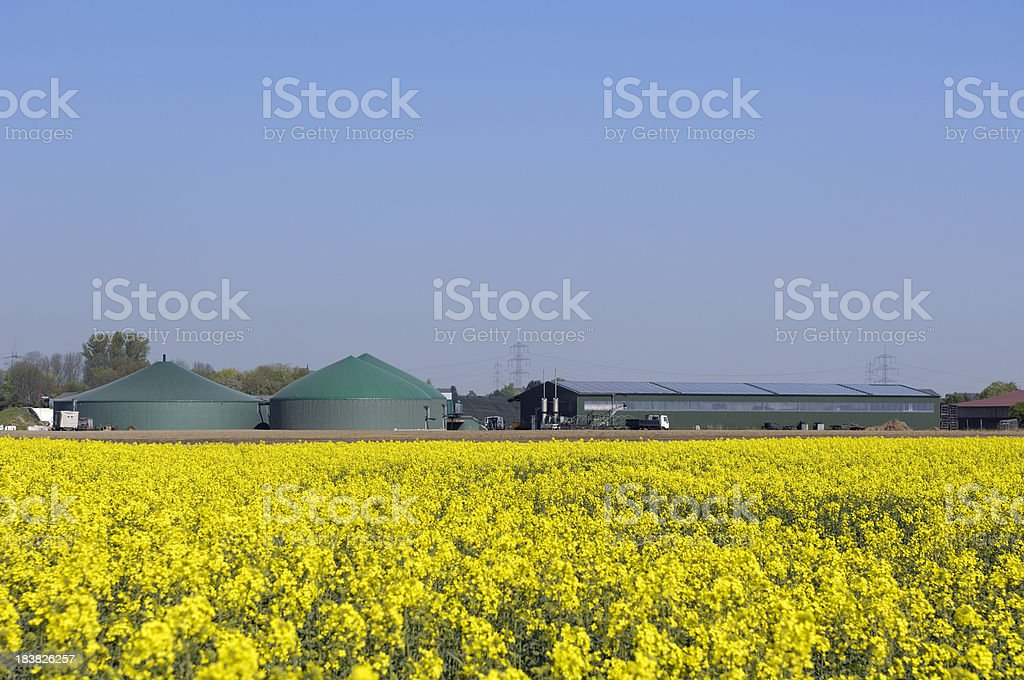 Biogas plant and rape field royalty-free stock photo