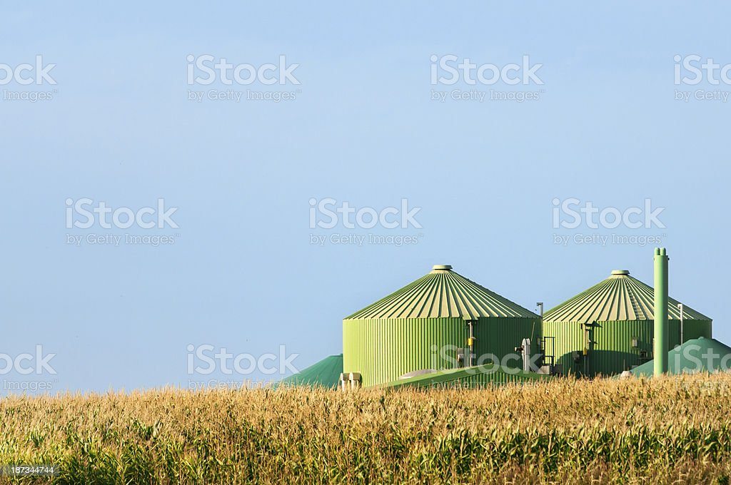 Biogas plant behind corn field in summer. stock photo