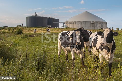 istock Biogas plant with Cows 500236319