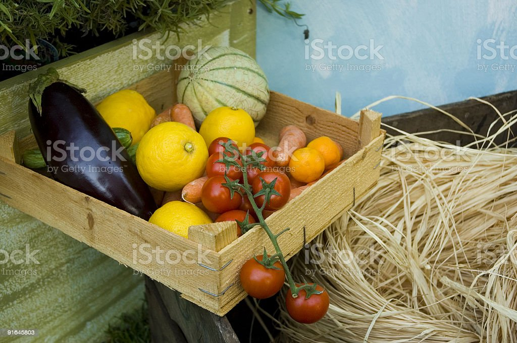 Biological vegetable case royalty-free stock photo