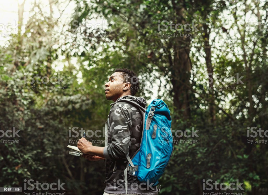 Biologist in a forest stock photo