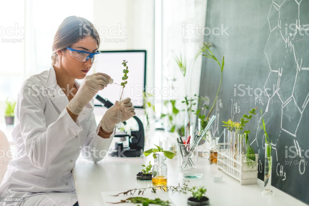 Biologist in her laboratory stock photo