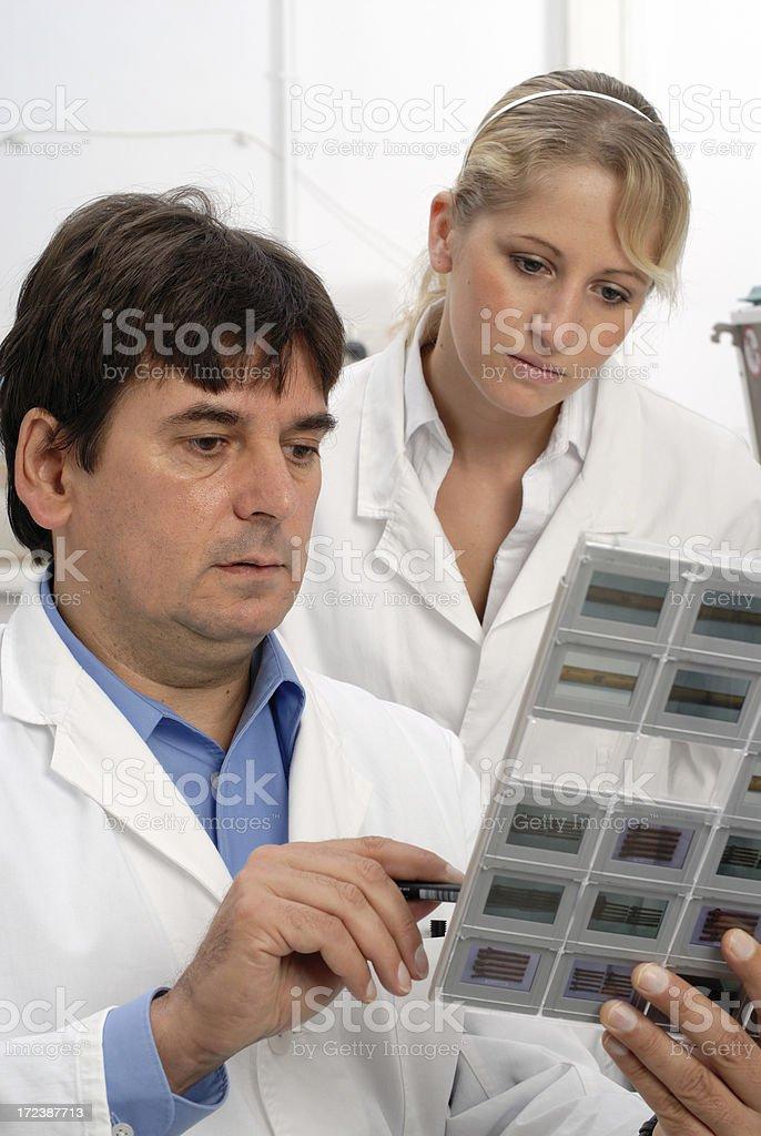 Biologist royalty-free stock photo