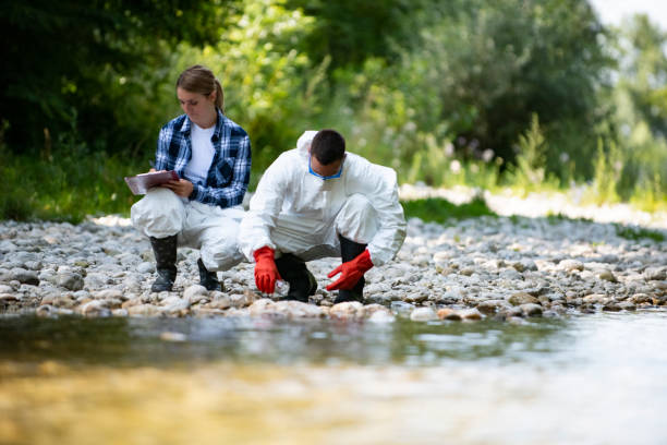 Biologist takes water from a forest river to study the composition in the laboratory
