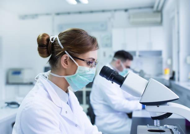 biolodzy pracujący z mikroskopem - laboratorium zdjęcia i obrazy z banku zdjęć