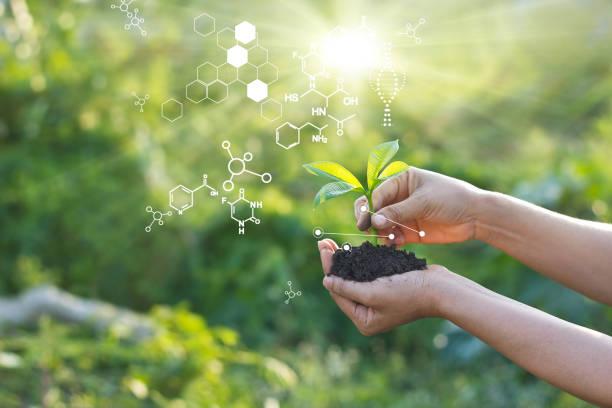 laboratorio de biología naturaleza y ciencia, plantas con estructura bioquímica sobre fondo verde. - química fotografías e imágenes de stock