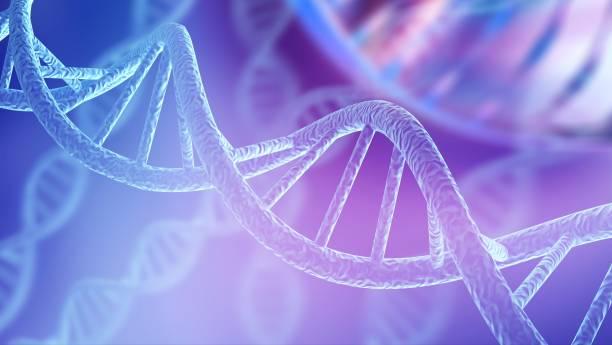 biología. - adn fotografías e imágenes de stock