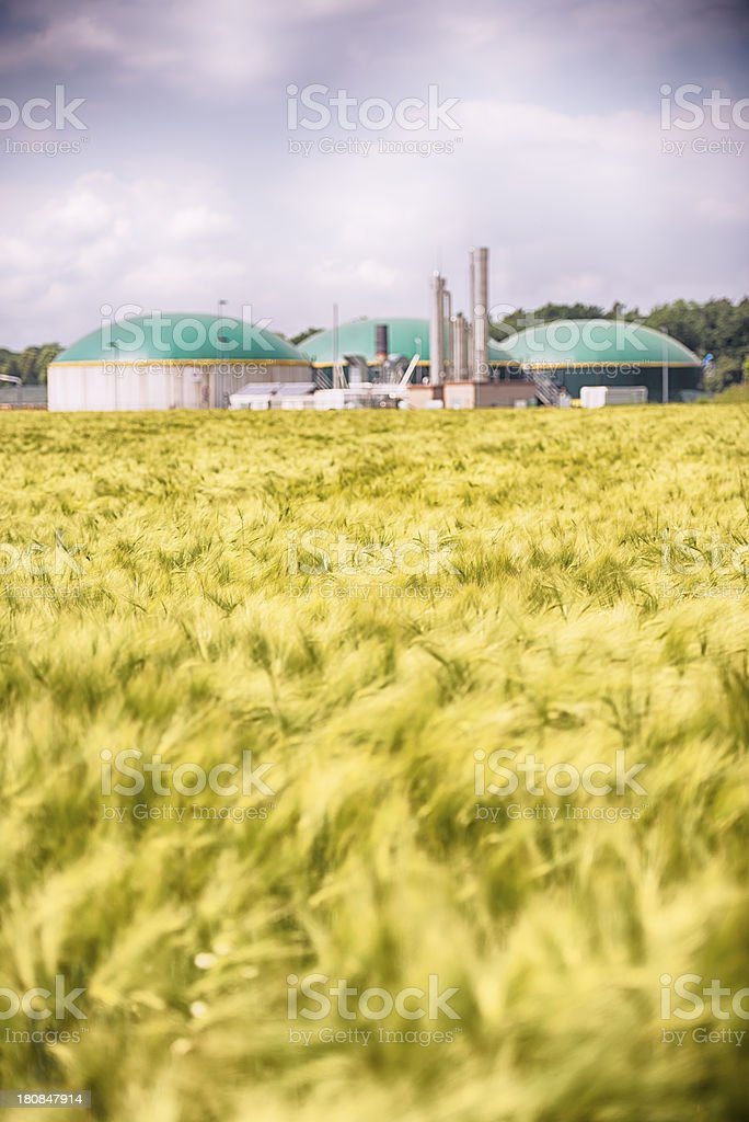 Biomass energy plant behind a wheat field Energiewende Biogas stock photo