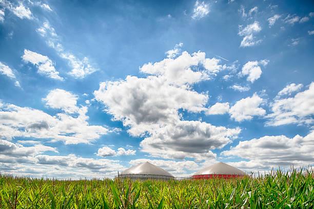 Biomasse Energie Pflanze unter eine große Wolkengebilde – Foto