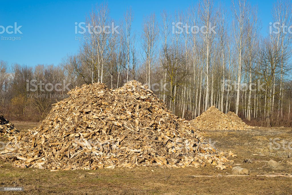 Biomass from lumber industry discards stock photo