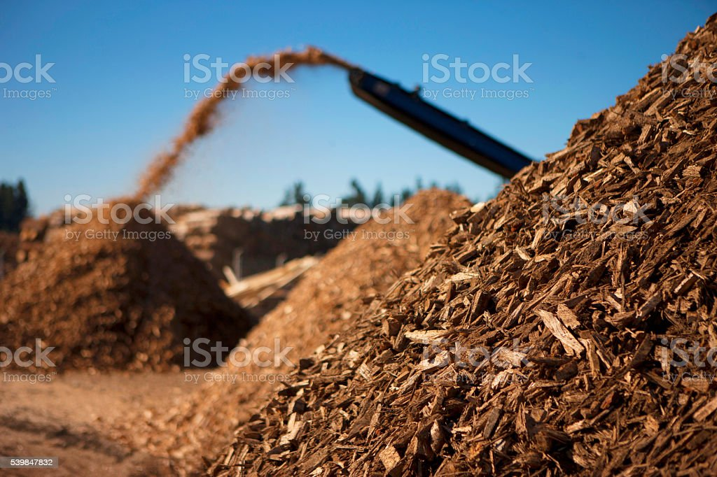 Biomass fuel of the future stock photo