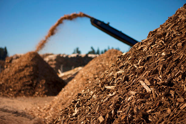 Biomass fuel of the future stock photo