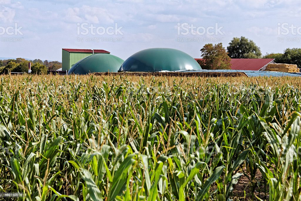 biomass plant stock photo