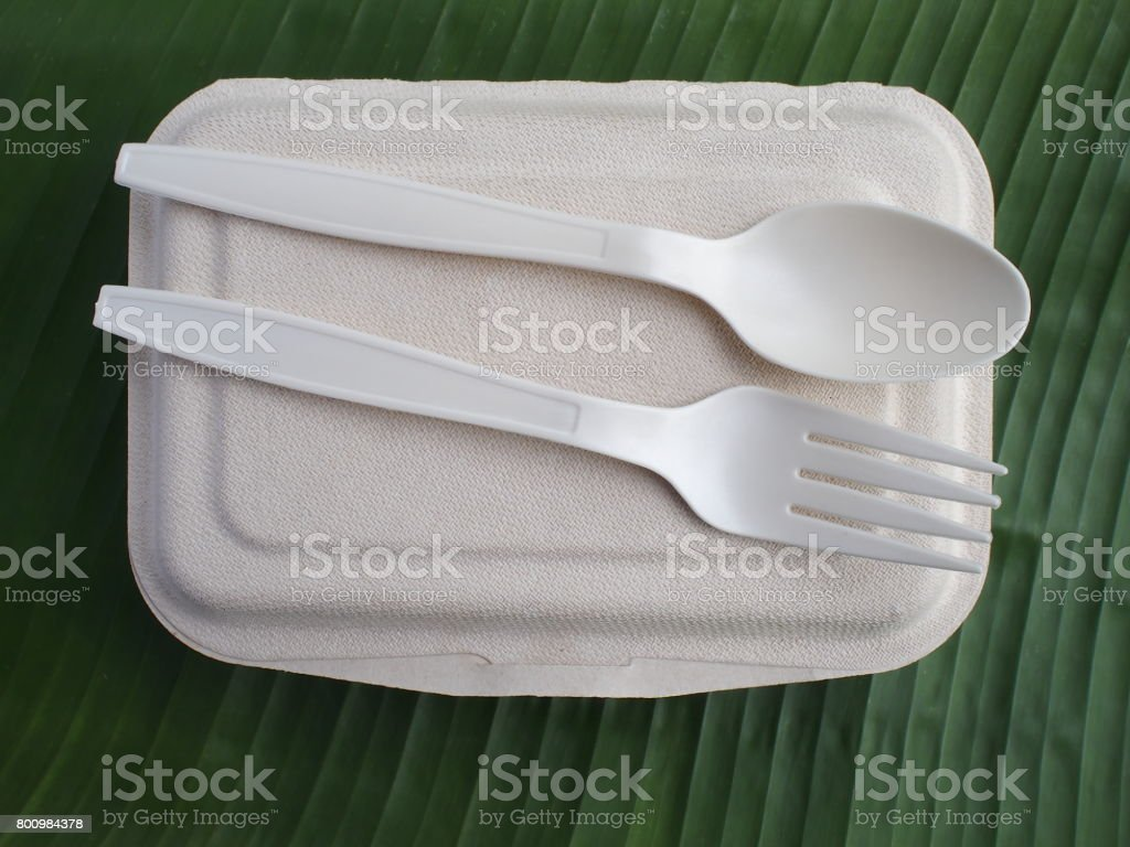 bioplastic spoon fork lunch box on banana leaves stock photo