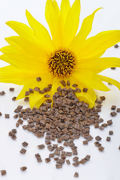 Biopolymer with blossom biodegradable and bio based pellets for injection molding process antipollution stock pictures, royalty-free photos & images