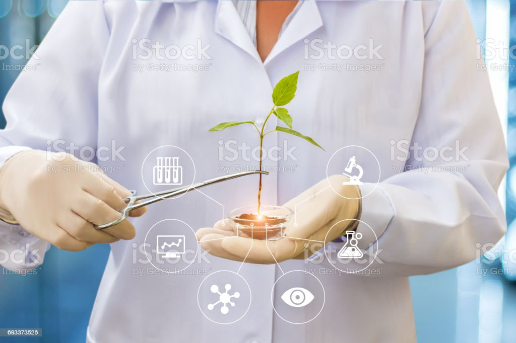 Biotechnology researcher concept. - foto stock