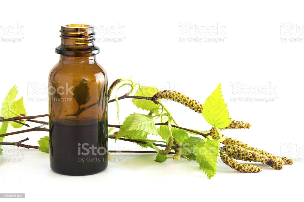 birch extract in a small bottle and branches with leaves stock photo