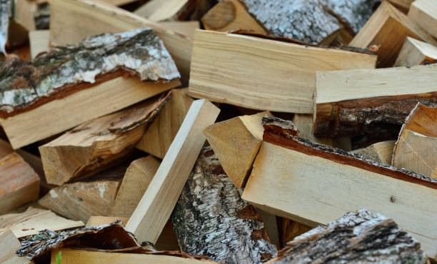 Cтоковое фото birch firewood