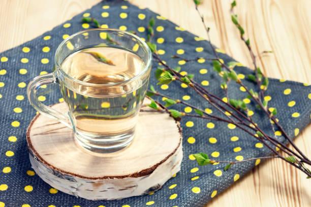 Birkensaft auf Küchentuch auf einem Tisch in einem Glasbecher, neben einem Zweig Birke mit jungen Blättern – Foto